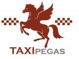Логотип Авто-Холдинг Пегас, ООО